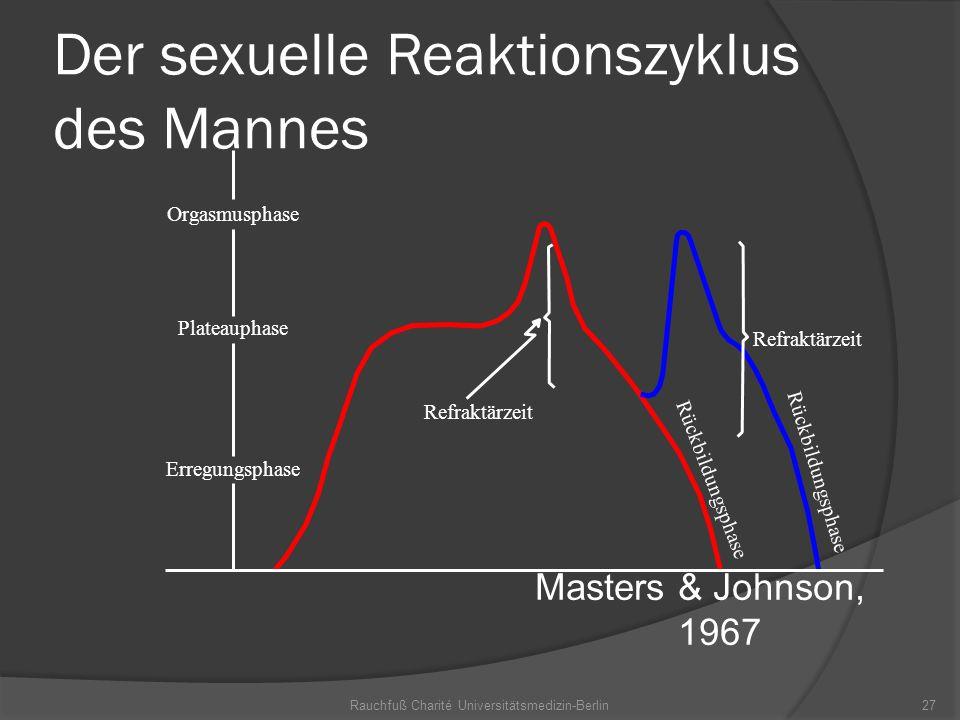 Rauchfuß Charité Universitätsmedizin-Berlin27 Der sexuelle Reaktionszyklus des Mannes Masters & Johnson, 1967 Orgasmusphase Plateauphase Erregungsphas