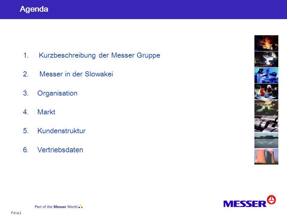 Fólia 2 Agenda 1. Kurzbeschreibung der Messer Gruppe 2. Messer in der Slowakei 3.Organisation 4.Markt 5.Kundenstruktur 6.Vertriebsdaten