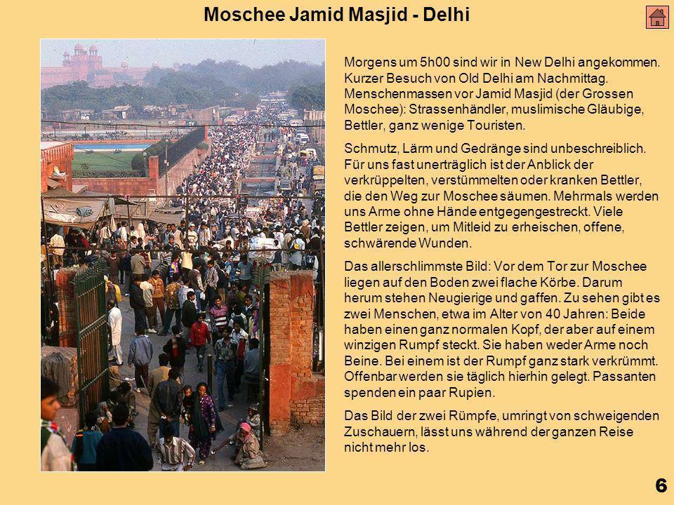 6 Moschee Jamid Masjid - Delhi Morgens um 5h00 sind wir in New Delhi angekommen.
