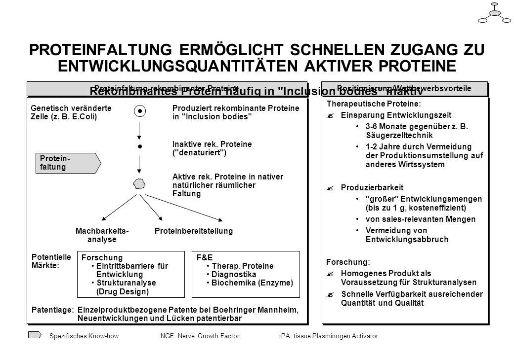 Positionierung/Wettbewerbsvorteile Proteinfaltung rekombinanter Proteine PROTEINFALTUNG ERMÖGLICHT SCHNELLEN ZUGANG ZU ENTWICKLUNGSQUANTITÄTEN AKTIVER PROTEINE Rekombinantes Protein häufig in Inclusion bodies inaktiv Spezifisches Know-how Genetisch veränderte Zelle (z.