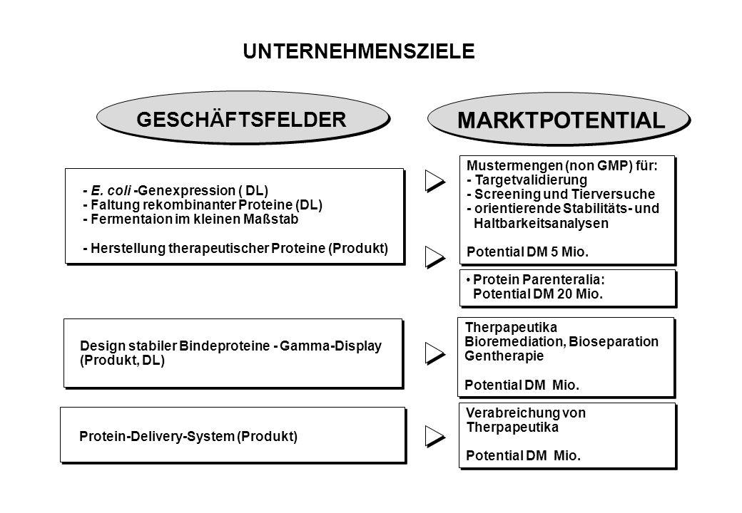 UNTERNEHMENSZIELE Design stabiler Bindeproteine - Gamma-Display (Produkt, DL) - E.