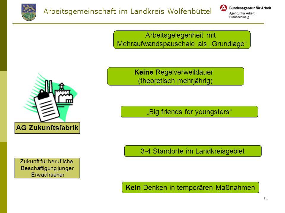 Arbeitsgemeinschaft im Landkreis Wolfenbüttel 10 Unser Ziel in der Aktivierung von unter 25-jährigen Hilfebedürftigen Alternative zur Arbeitslosigkeit