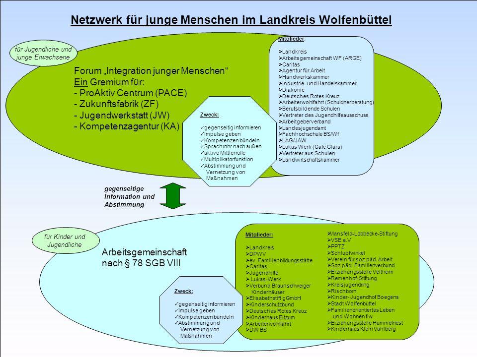 Arbeitsgemeinschaft im Landkreis Wolfenbüttel 13 Zukunftsfabrik Vernetzung Politik Schule Arbeitgeber in der Region Bildungsträger Kammern Innungen Ju