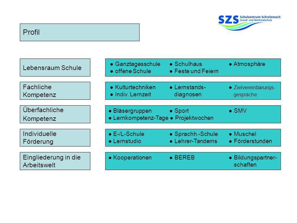 Profil Fachliche Kompetenz Überfachliche Kompetenz Individuelle Förderung Eingliederung in die Arbeitswelt Lebensraum Schule Ganztagesschule Schulhaus