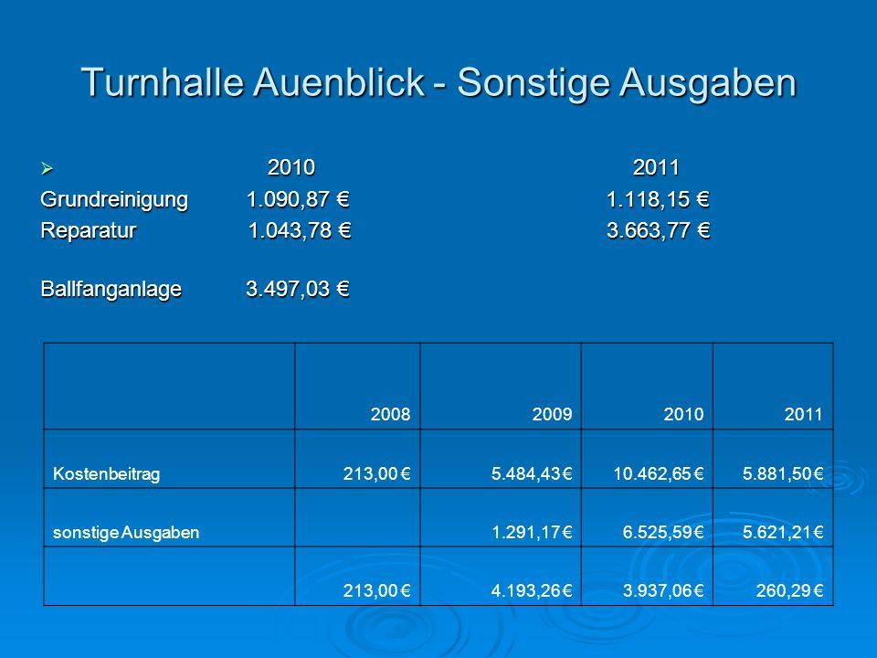 Turnhalle Auenblick - Sonstige Ausgaben 2010 2011 2010 2011 Grundreinigung 1.090,87 1.118,15 Grundreinigung 1.090,87 1.118,15 Reparatur 1.043,78 3.663