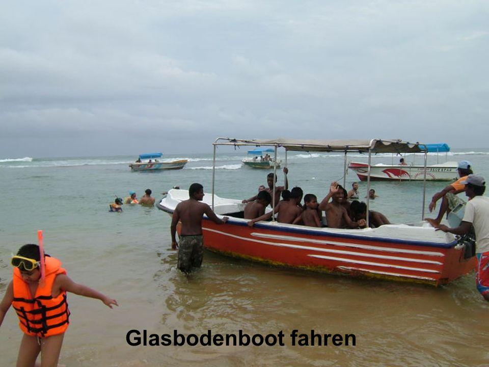 Glasbodenboot fahren