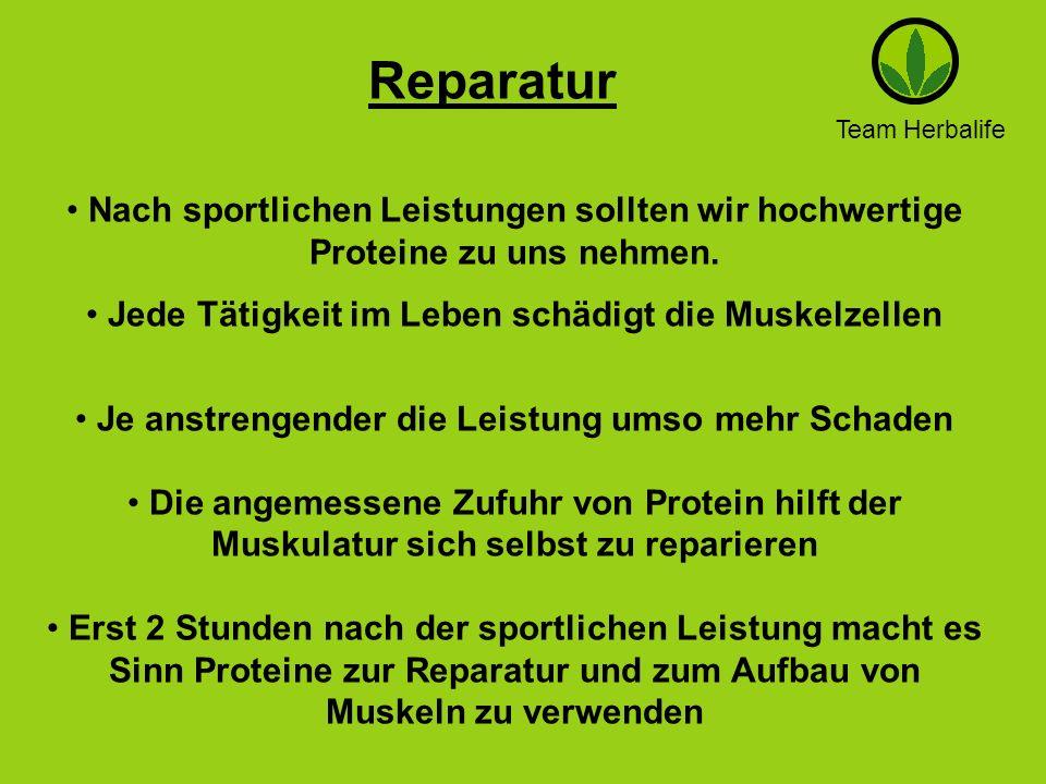 Team Herbalife Reparatur Nach sportlichen Leistungen sollten wir hochwertige Proteine zu uns nehmen. Jede Tätigkeit im Leben schädigt die Muskelzellen