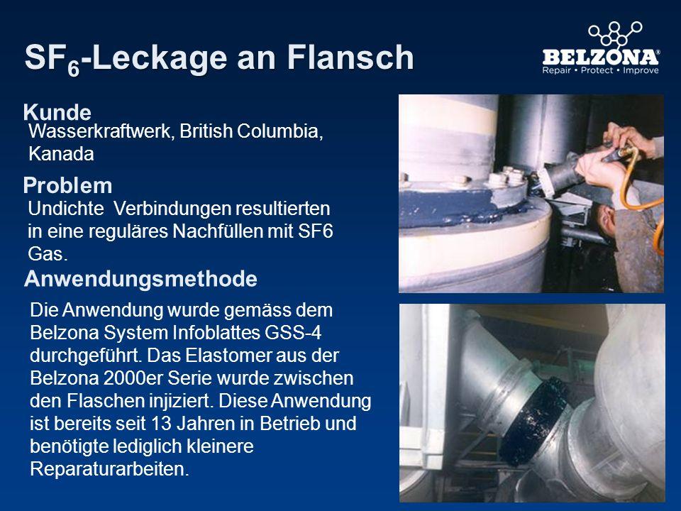 Kunde Problem Anwendungsmethode SF 6 -Leckage an Flansch Wasserkraftwerk, British Columbia, Kanada Undichte Verbindungen resultierten in eine reguläre