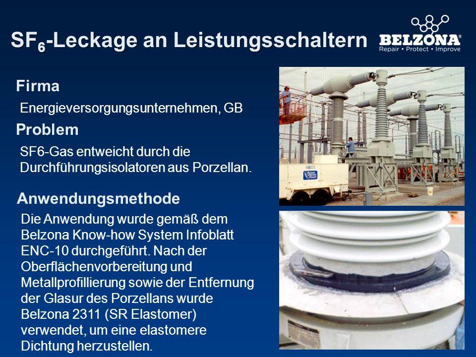 Firma Problem Anwendungsmethode SF 6 -Leckage an Leistungsschaltern Energieversorgungsunternehmen, GB SF6-Gas entweicht durch die Durchführungsisolato