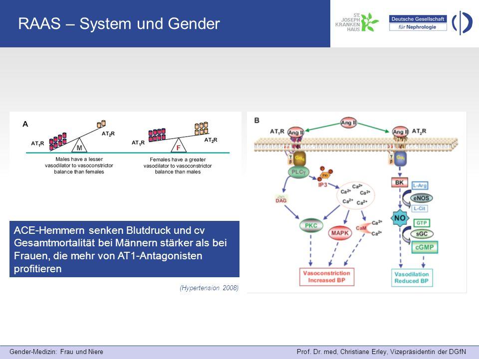 Gender-Medizin: Frau und Niere Prof. Dr. med, Christiane Erley, Vizepräsidentin der DGfN RAAS – System und Gender (Hypertension 2008) ACE-Hemmern senk