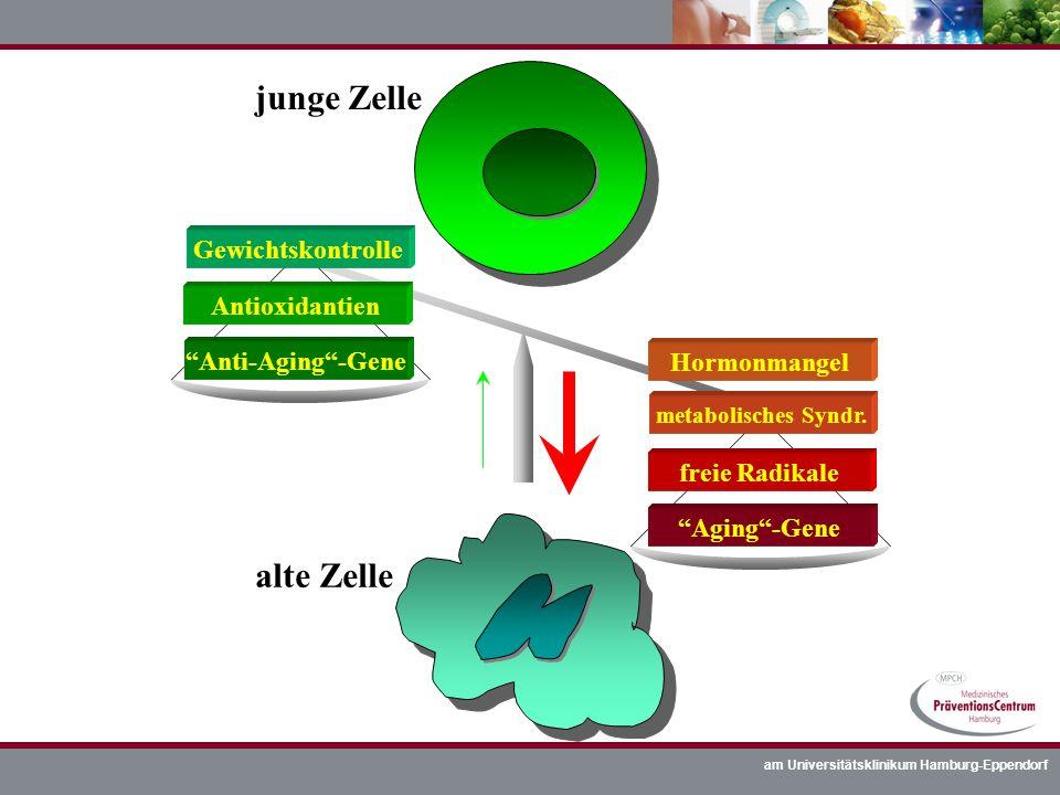 am Universitätsklinikum Hamburg-Eppendorf junge Zelle alte Zelle Anti-Aging-Gene Aging-Gene freie Radikale metabolisches Syndr. Antioxidantien Gewicht