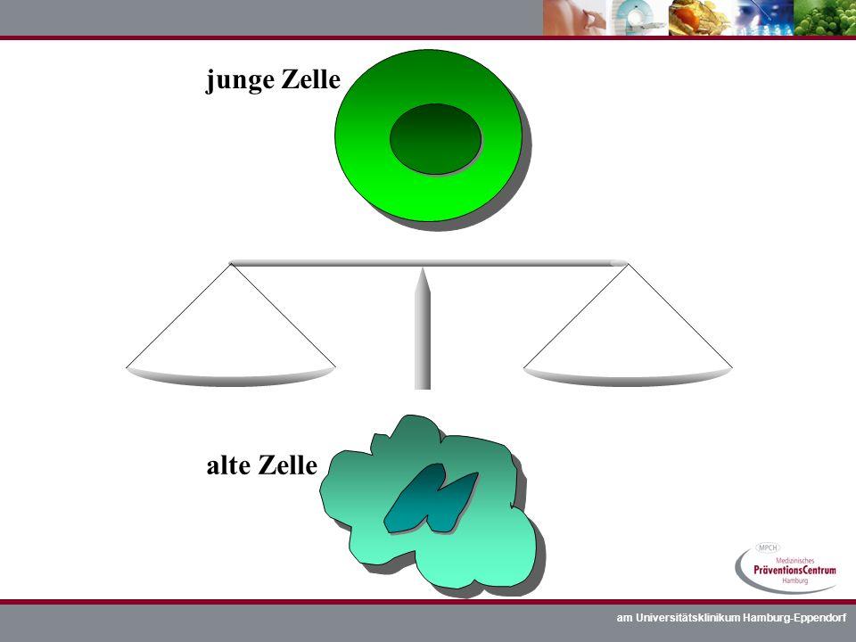 am Universitätsklinikum Hamburg-Eppendorf junge Zelle alte Zelle