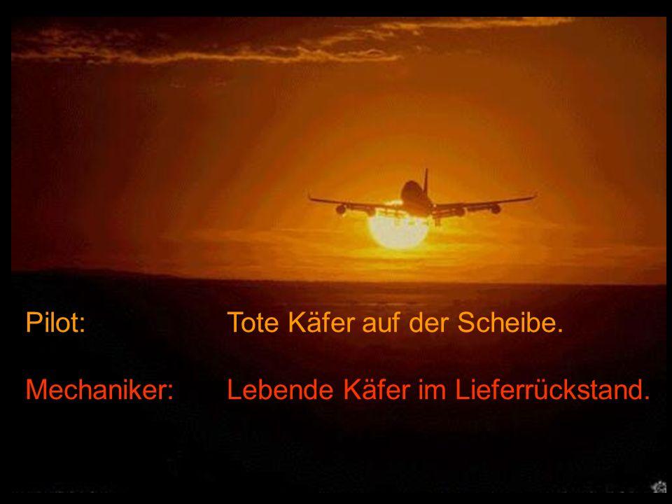 Pilot: Tote Käfer auf der Scheibe. Mechaniker:Lebende Käfer im Lieferrückstand.