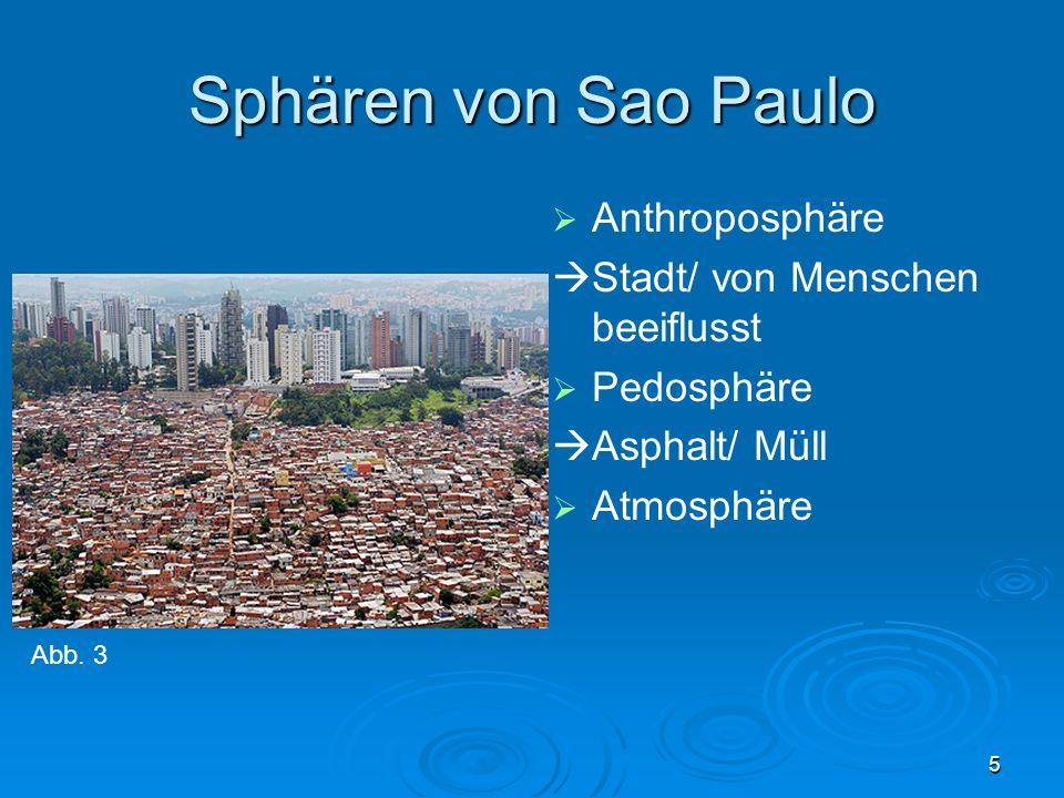 5 Sphären von Sao Paulo Anthroposphäre Stadt/ von Menschen beeiflusst Pedosphäre Asphalt/ Müll Atmosphäre Abb. 3