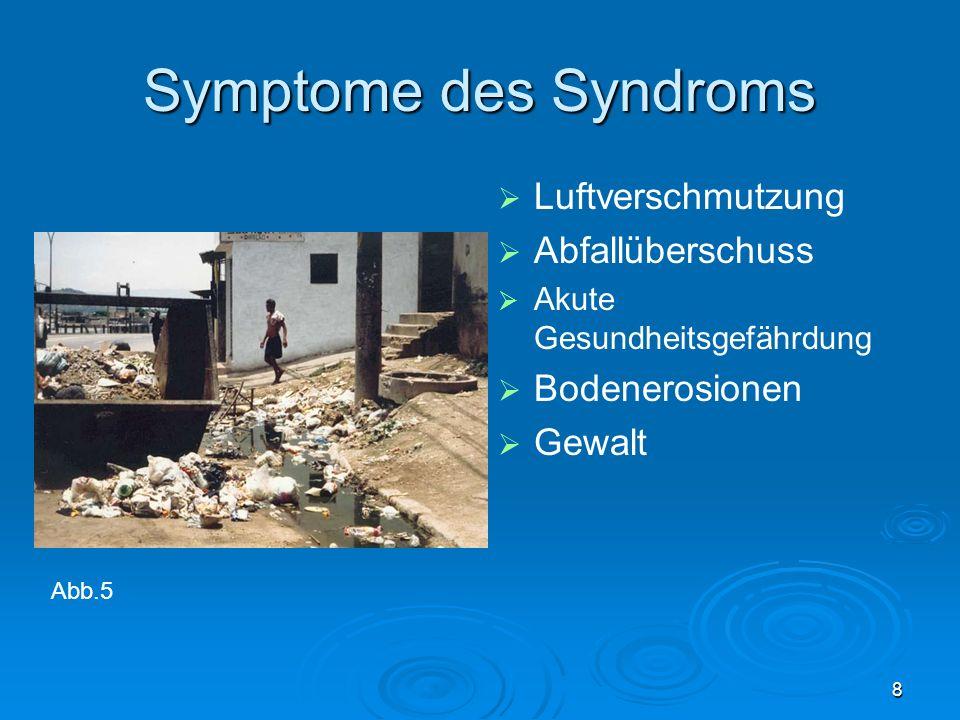 8 Symptome des Syndroms Luftverschmutzung Abfallüberschuss Akute Gesundheitsgefährdung Bodenerosionen Gewalt Abb.5