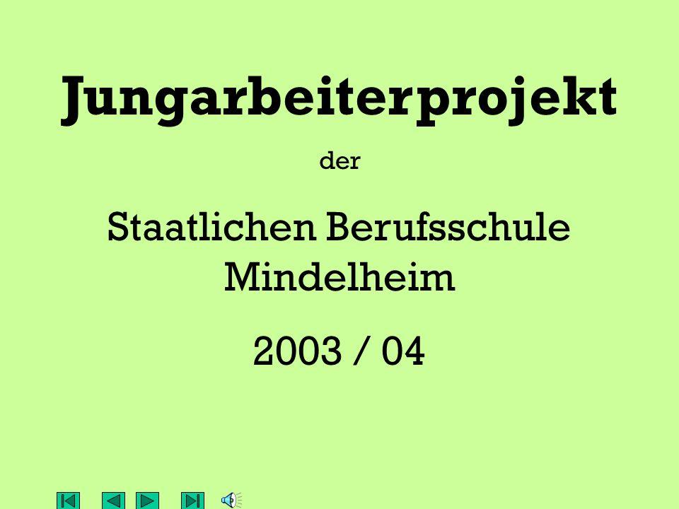 Jungarbeiterklasse JA 10, Schuljahr 2003/04 vor dem ersten Arbeitseinsatz mit: H.