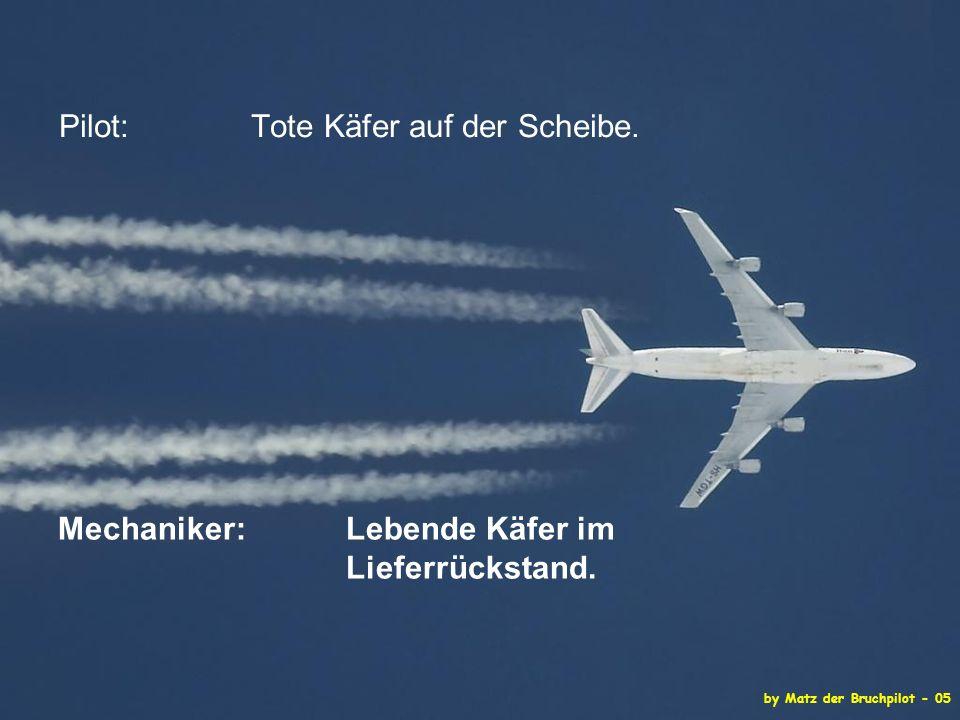 by Matz der Bruchpilot - 05 Pilot: Tote Käfer auf der Scheibe.