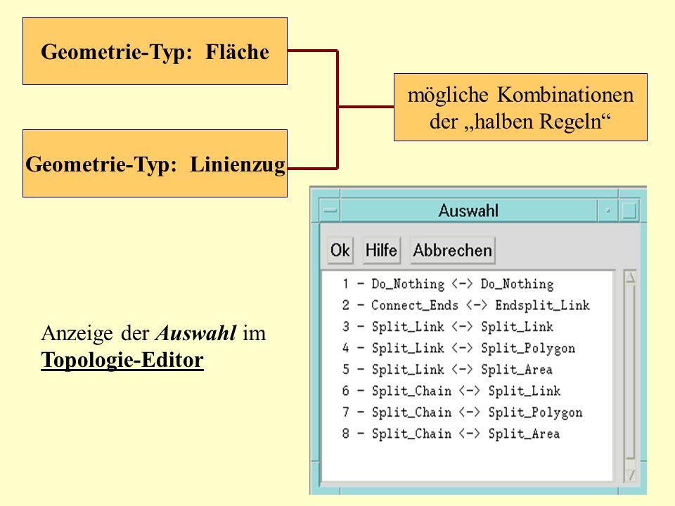 mögliche Kombinationen der halben Regeln Geometrie-Typ: Fläche Geometrie-Typ: Linienzug Anzeige der Auswahl im Topologie-Editor