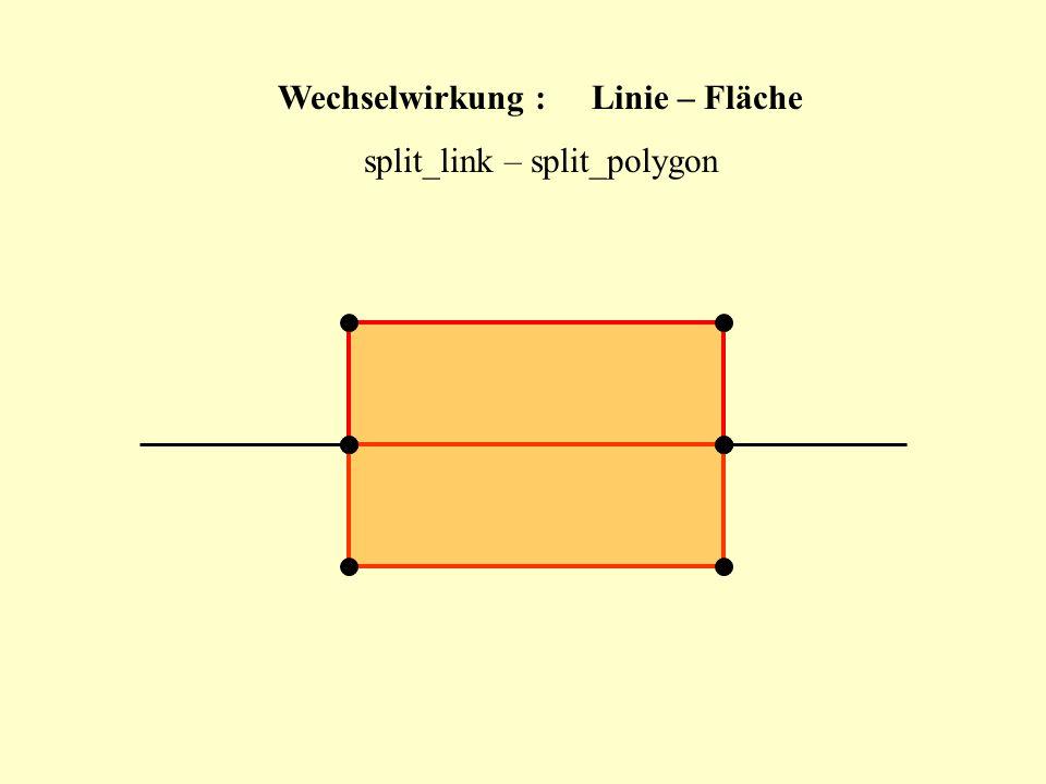 Wechselwirkung :Linie – Fläche split_link – split_polygon
