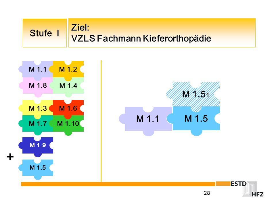 28 Ziel: VZLS Fachmann Kieferorthopädie M 1.5 1 M 1.1 M 1.5 + M 1.3 M 1.9 M 1.8 M 1.1M 1.2 M 1.6 M 1.7 M 1.10 M 1.4 Stufe I