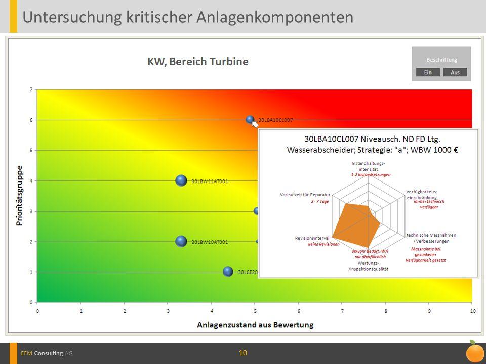10 Untersuchung kritischer Anlagenkomponenten EFM Consulting AG