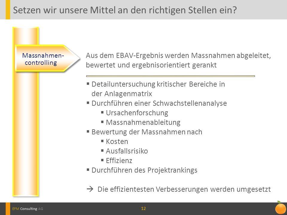 12 Setzen wir unsere Mittel an den richtigen Stellen ein? EFM Consulting AG Massnahmen- controlling Aus dem EBAV-Ergebnis werden Massnahmen abgeleitet