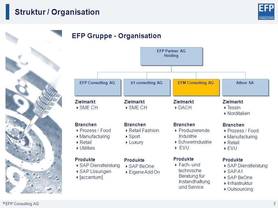 Struktur / Organisation 3 EFP Partner AG Holding EFP Partner AG Holding EFP Consulting AG b1 consulting AG EFM Consulting AG Athon SA Zielmarkt SME CH