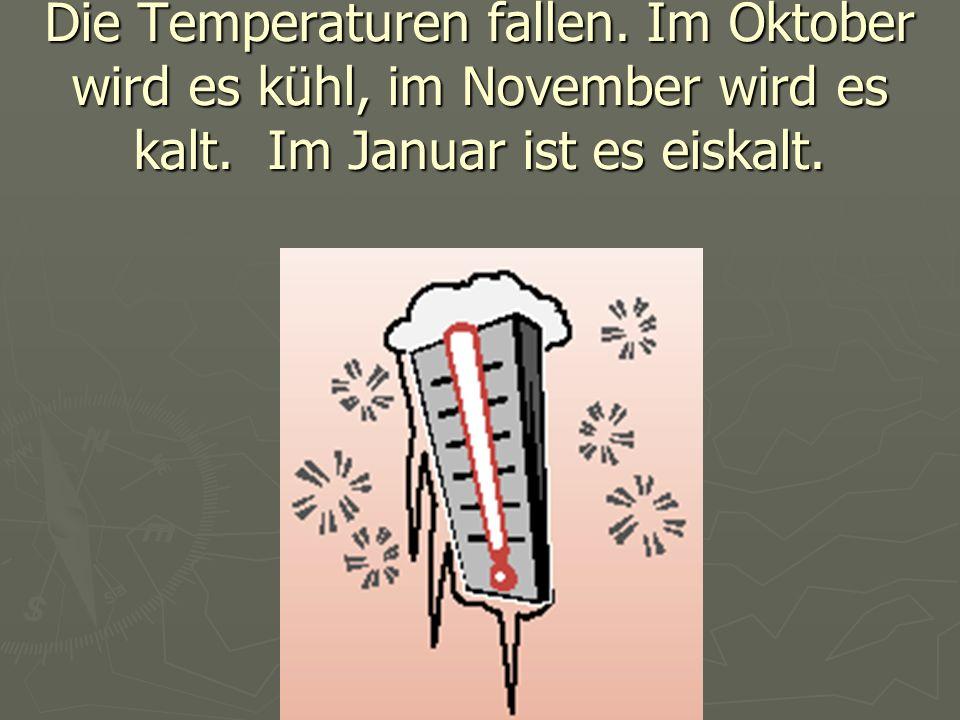 Die Temperaturen fallen. Im Oktober wird es kühl, im November wird es kalt. Im Januar ist es eiskalt.