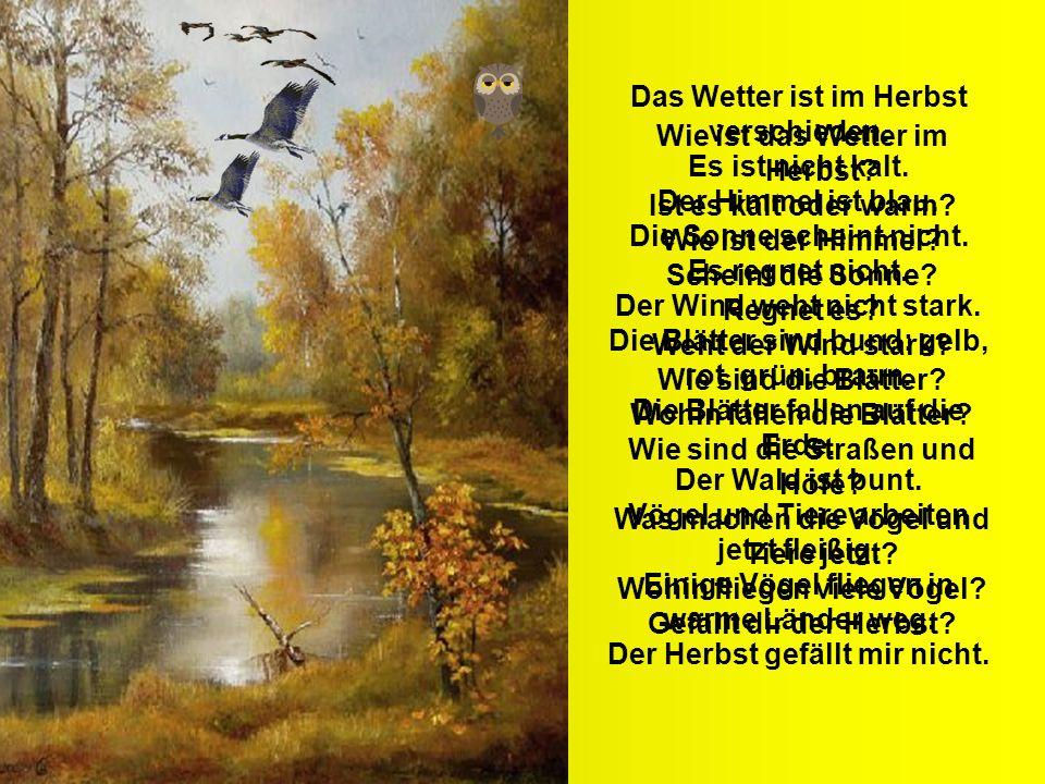 Wie ist das Wetter im Herbst? Ist es kalt oder warm? Wie ist der Himmel? Scheint die Sonne? Regnet es? Weht der Wind stark? Wie sind die Blätter? Wohi