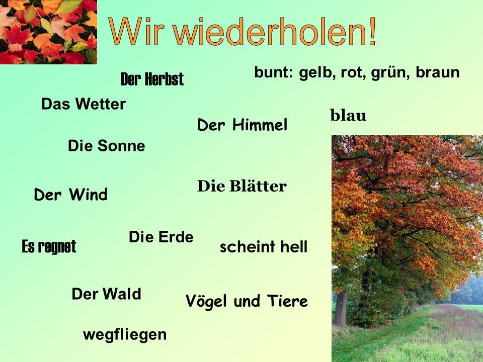 Das Wetter Der Himmel Die Sonne Der Wind Die Blätter Die Erde Der Wald Der Herbst Vögel und Tiere bunt: gelb, rot, grün, braun blau scheint hell Es re