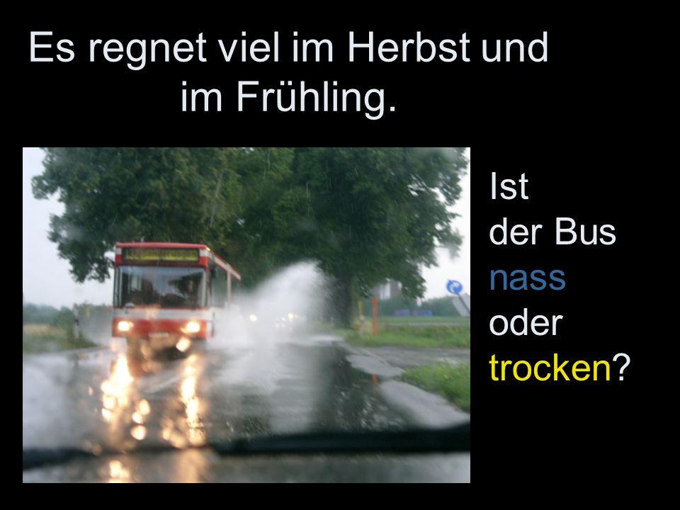 Es regnet viel im Herbst und im Frühling. Ist der Bus nass oder trocken?