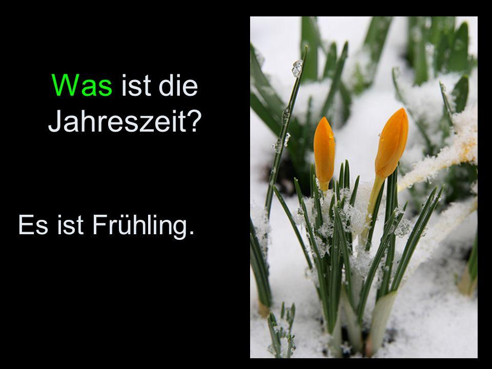 Was ist die Jahreszeit? Es ist Frühling.