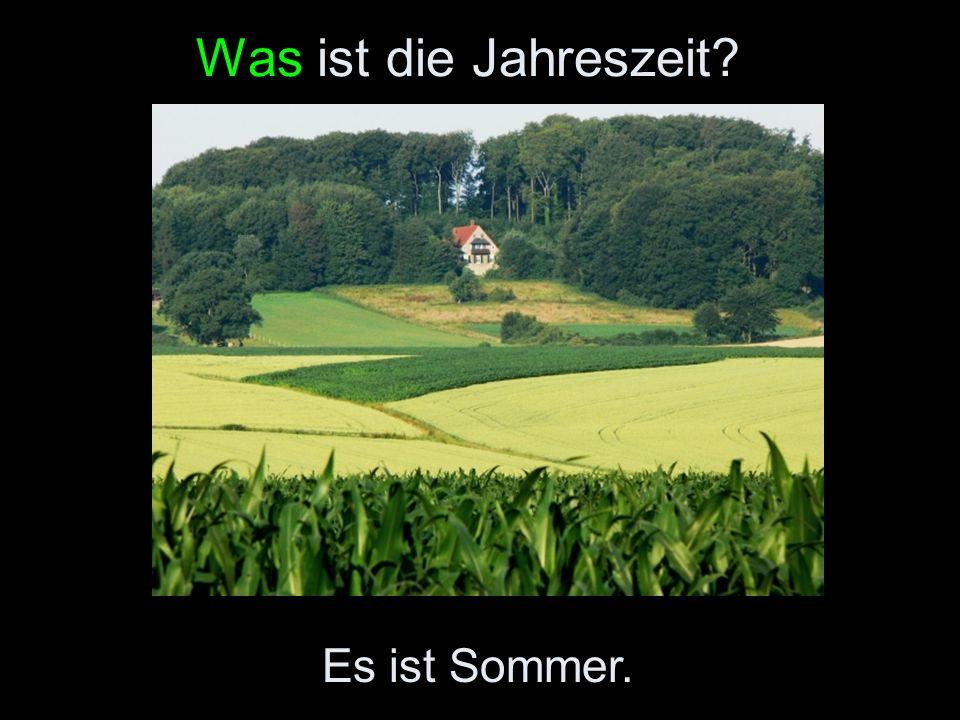 Was ist die Jahreszeit? Es ist Sommer.