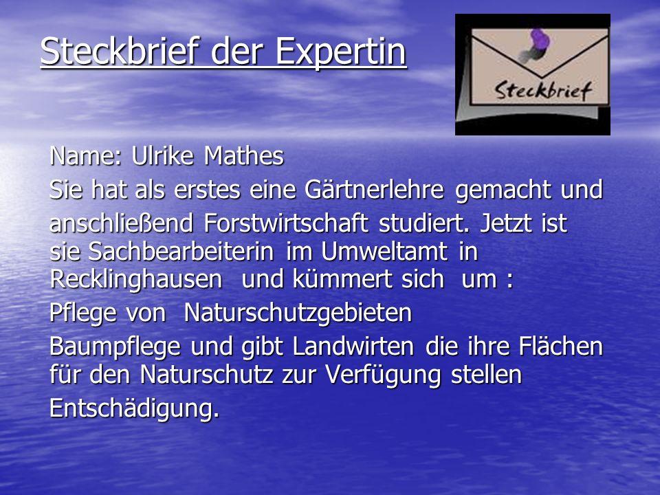 Steckbrief der Expertin Name: Ulrike Mathes Name: Ulrike Mathes Sie hat als erstes eine Gärtnerlehre gemacht und Sie hat als erstes eine Gärtnerlehre