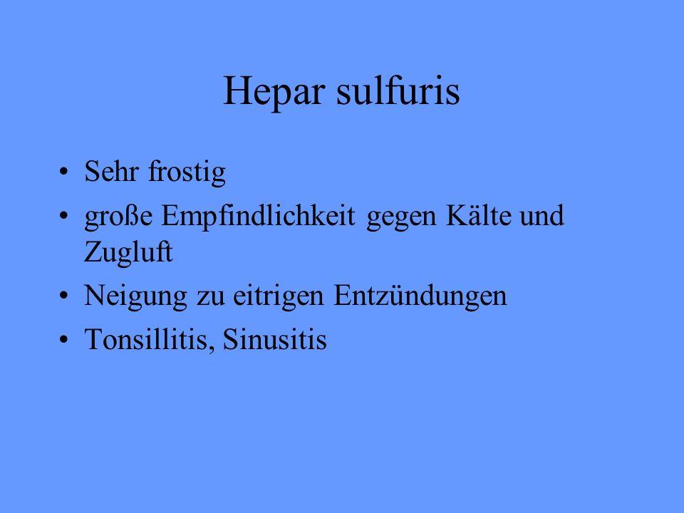 Hepar sulfuris Sehr frostig große Empfindlichkeit gegen Kälte und Zugluft Neigung zu eitrigen Entzündungen Tonsillitis, Sinusitis