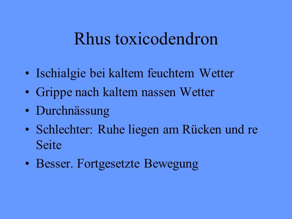 Rhus toxicodendron Ischialgie bei kaltem feuchtem Wetter Grippe nach kaltem nassen Wetter Durchnässung Schlechter: Ruhe liegen am Rücken und re Seite