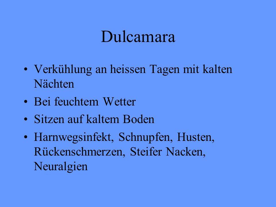 Dulcamara Verkühlung an heissen Tagen mit kalten Nächten Bei feuchtem Wetter Sitzen auf kaltem Boden Harnwegsinfekt, Schnupfen, Husten, Rückenschmerze