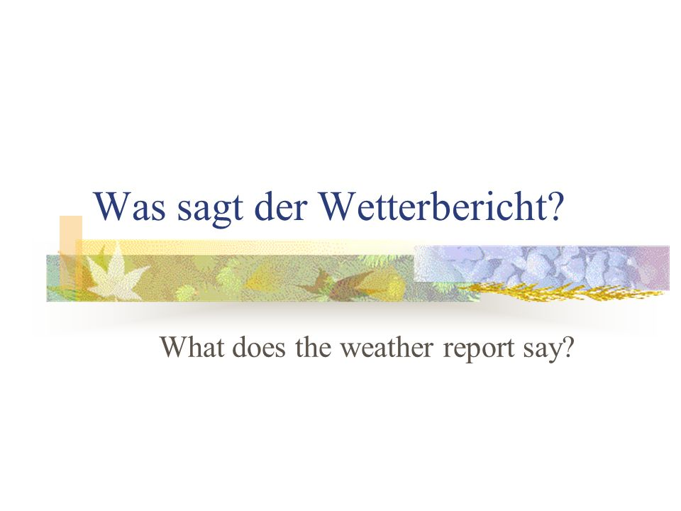 Was sagt der Wetterbericht? What does the weather report say?