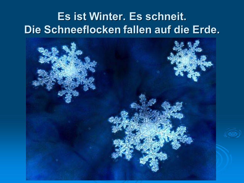 Es ist Winter. Es schneit. Die Schneeflocken fallen auf die Erde.