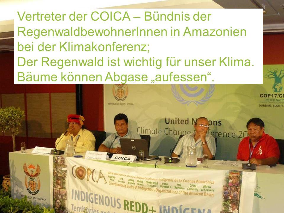 23 www.klimabuendnis.at Vertreter der COICA – Bündnis der RegenwaldbewohnerInnen in Amazonien bei der Klimakonferenz; Der Regenwald ist wichtig für un