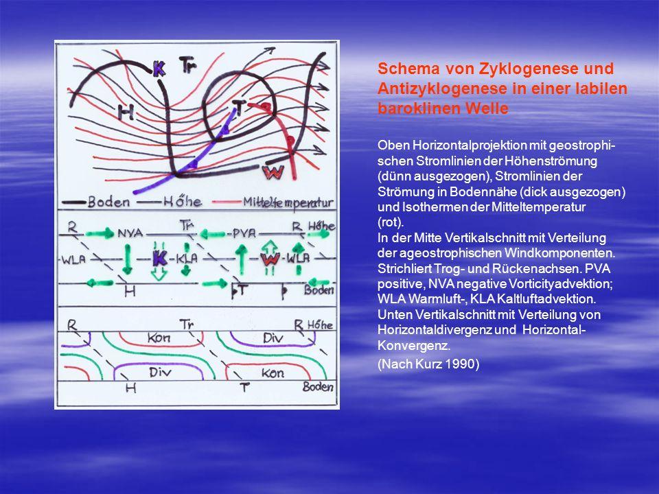 Schema von Zyklogenese und Antizyklogenese in einer labilen baroklinen Welle Oben Horizontalprojektion mit geostrophi- schen Stromlinien der Höhenströ