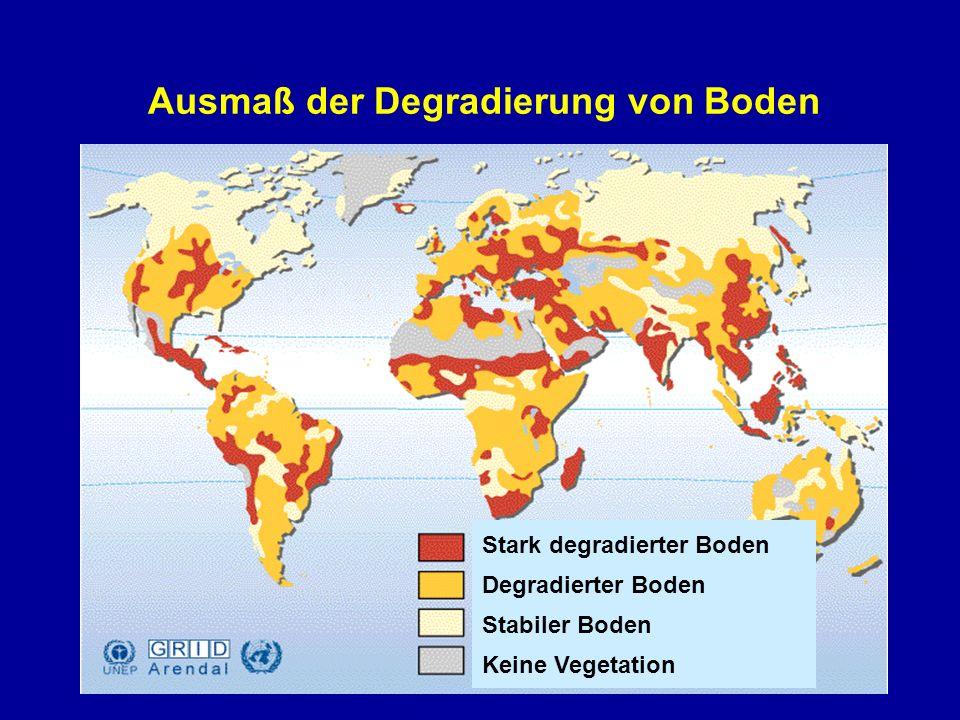Ausmaß der Degradierung von Boden Stark degradierter Boden Degradierter Boden Stabiler Boden Keine Vegetation