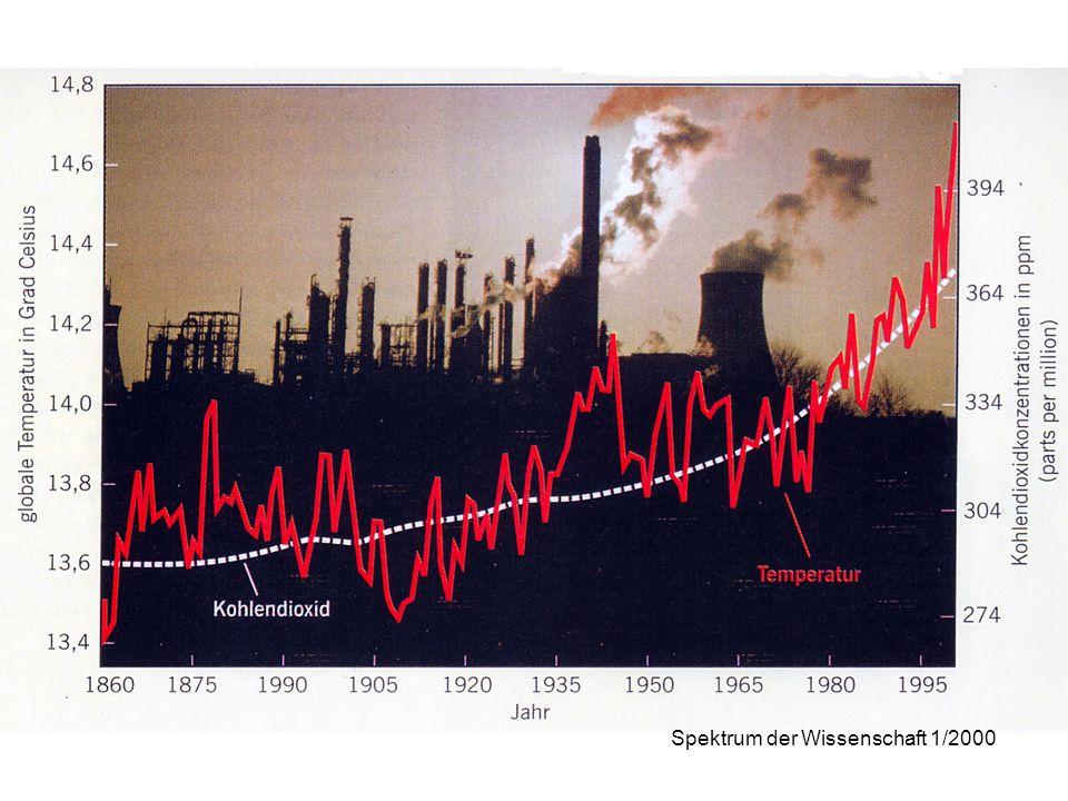 Spektrum der Wissenschaft 1/2000