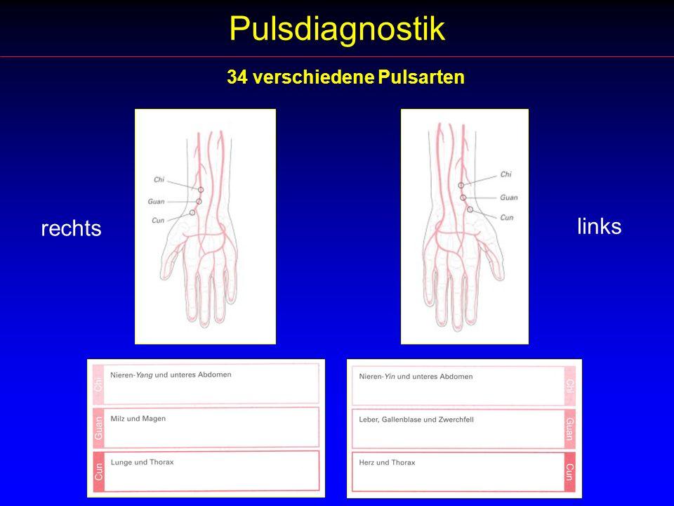 Pulsdiagnostik rechts links 34 verschiedene Pulsarten