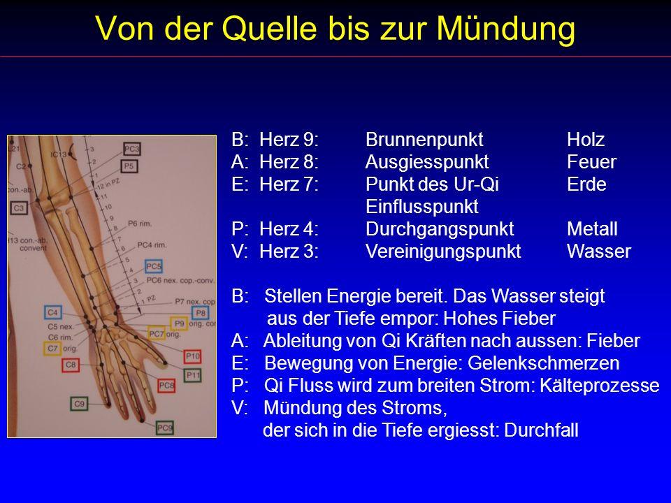 Von der Quelle bis zur Mündung B: Herz 9:BrunnenpunktHolz A: Herz 8:AusgiesspunktFeuer E: Herz 7:Punkt des Ur-QiErde Einflusspunkt P: Herz 4:Durchgang