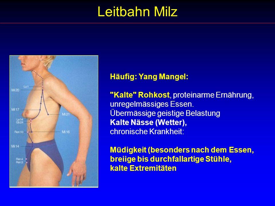 Leitbahn Milz Häufig: Yang Mangel: Kalte Rohkost, proteinarme Ernährung, unregelmässiges Essen.