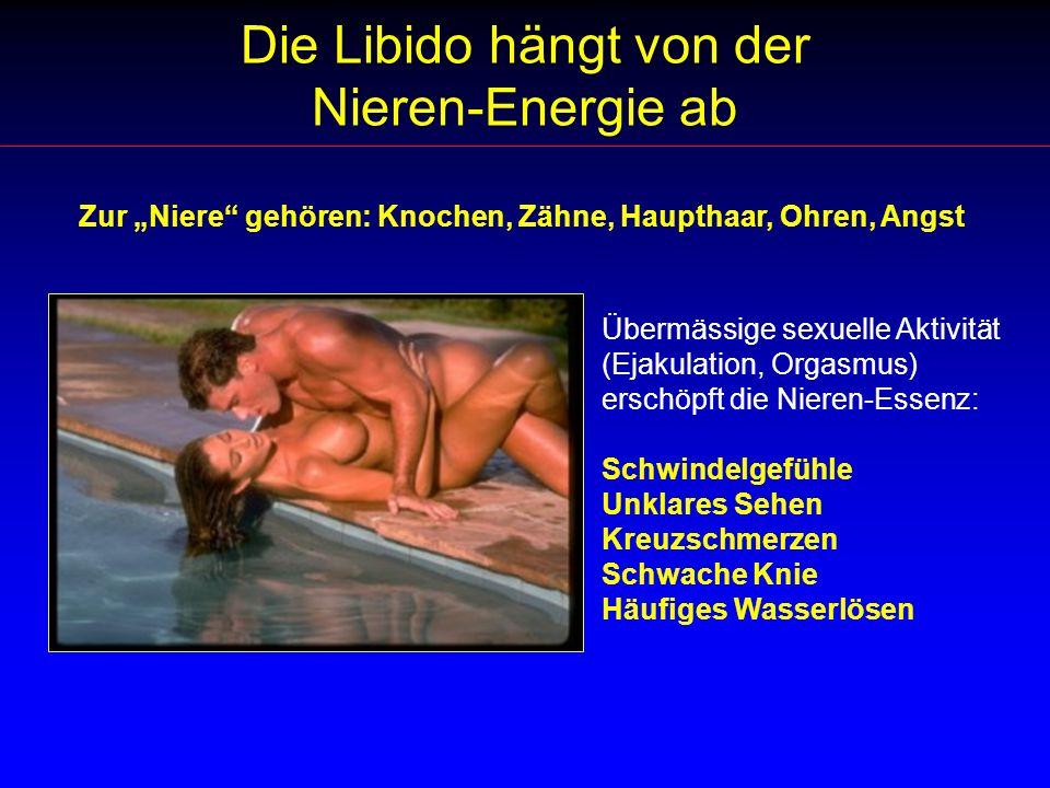 Die Libido hängt von der Nieren-Energie ab Übermässige sexuelle Aktivität (Ejakulation, Orgasmus) erschöpft die Nieren-Essenz: Schwindelgefühle Unklar