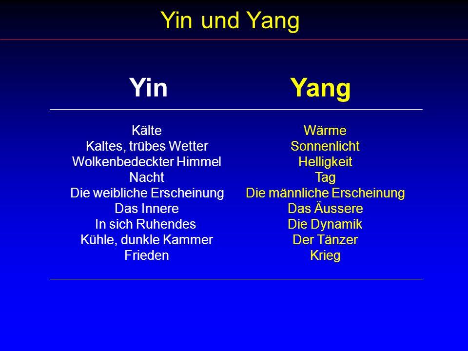 Libido Mangel: Therapie Stärkung des Nieren-Yang: Warme bis heisse, scharfe Nahrungsmittel: Chinesischer Lauch, Fenchel.