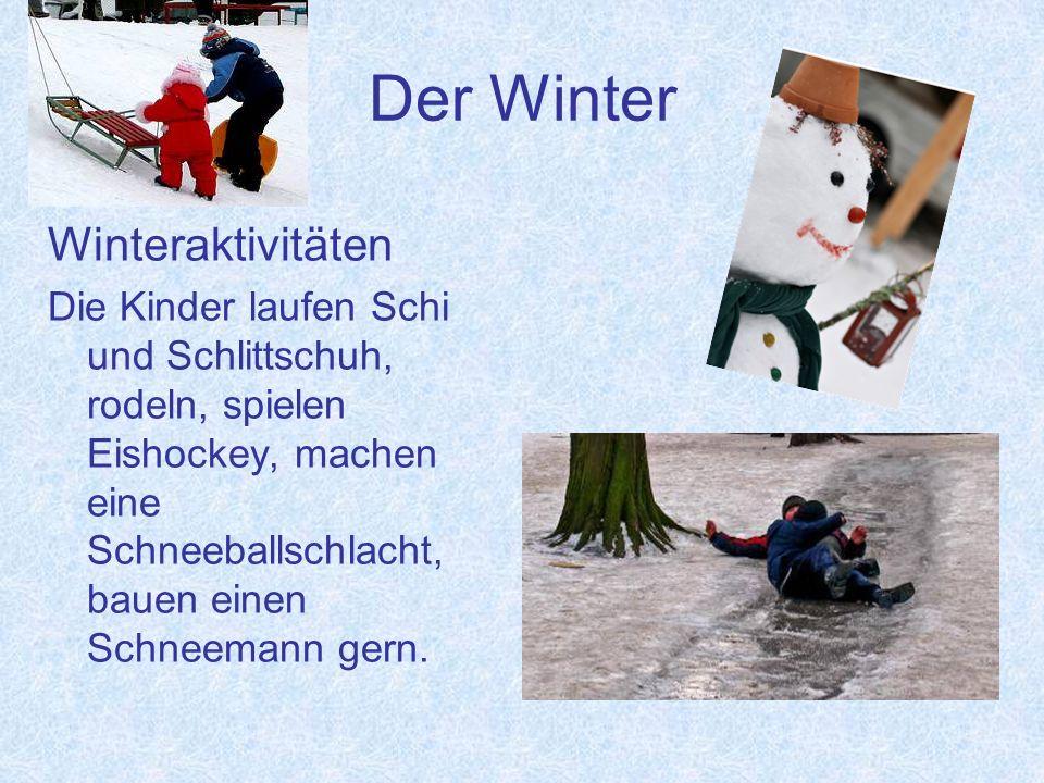 Der Winter Winterfeste Man feiert in Deutschland Weihnachten und in Russland Neujahr.