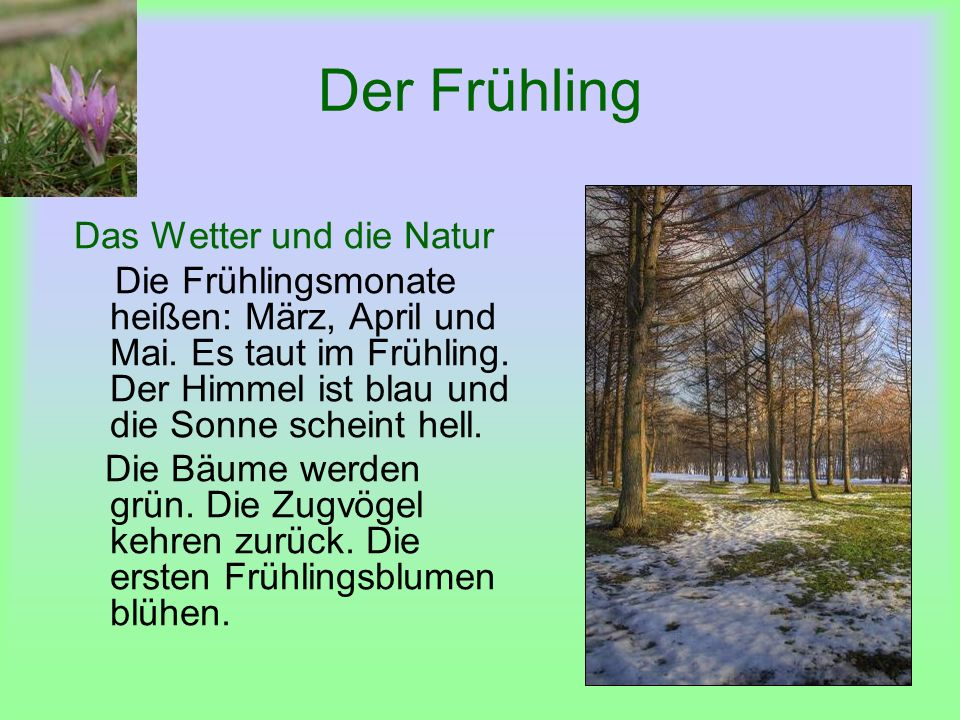 Der Frühling Frühlingsfeste Man feiert Ostern im Frühling.
